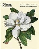 Natural History Museum Schreibtischkalender Botanische Zeichnungen und Gemälde 2020