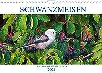 Schwanzmeisen (Wandkalender 2022 DIN A4 quer): Schwanzmeisen als charmante Gaeste in Park und Garten (Monatskalender, 14 Seiten )