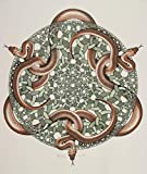 Maurits Cornelis Escher Giclee Lienzo Impresión Pintura póster Reproducción (Serpientes)