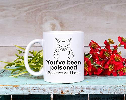 You've Been Poisoned Vulgar Middle Finger Mug for Cat Lover Great Gag Gift for Her Rude Mug for Him Funny Coffee Cup