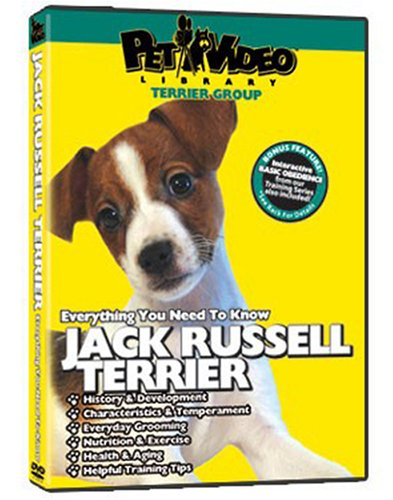 JACK RUSSELL TERRIER DVD: Everything You Should Know + Dog & Puppy Training Bonus