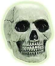 glow in the dark skull