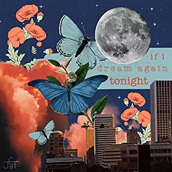 If I Dream Again Tonight