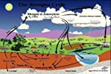 4730500 - Nitrogen Cycle Poster - Nitrogen Cycle...