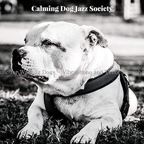 Calming Dog Jazz Society