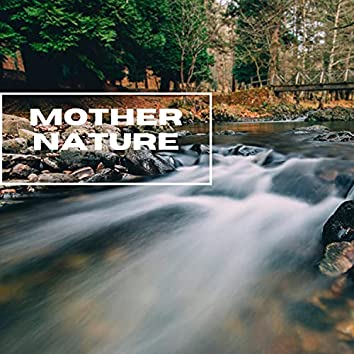 Mother Nature - Beautiful Forest Sounds