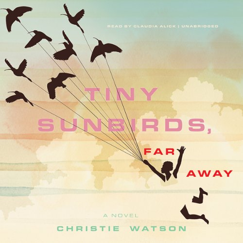 Tiny Sunbirds, Far Away audiobook cover art
