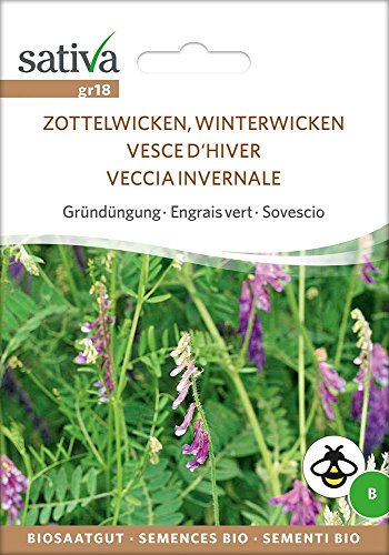 Gründüngung Zottelwicken, Winterwicken | Bio-Gründüngung