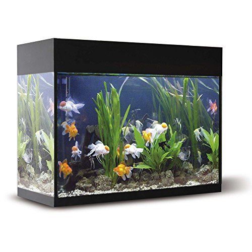 ICA KXB45N Kit Aqualux con Filtro Interior, Negro