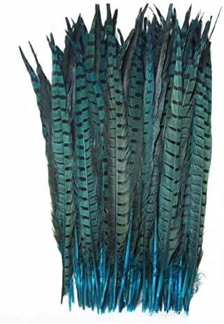 Celine lin 10PCS Natural Pheasant Feathers Pheasant Tails 14-16inch(35-40CM),Natural
