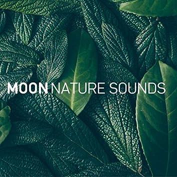 Musica Relajante para Estudiar (8D Audio)