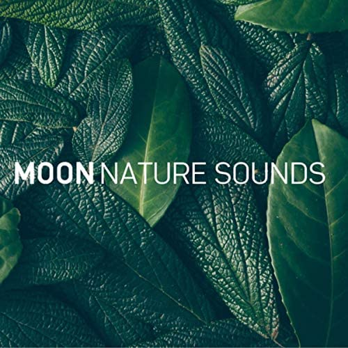 LUNA TUNES & Luna Sonidos de la Naturaleza