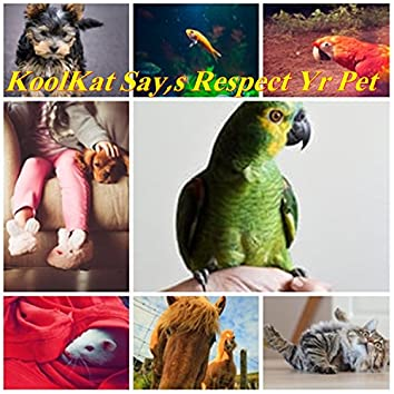 Respect Yr Pet