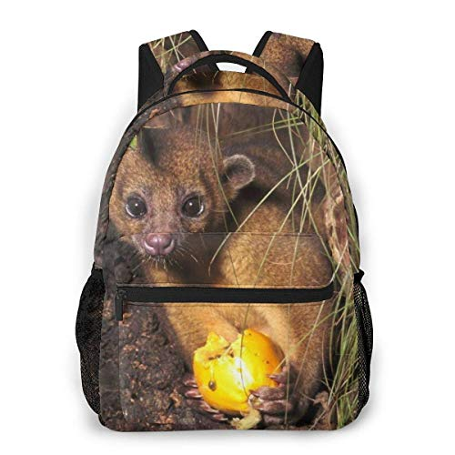 Lawenp Fashion Unisex Backpack Cute Baby Opossum Bookbag Lightweight Laptop Bag for School Travel Outdoor Camping