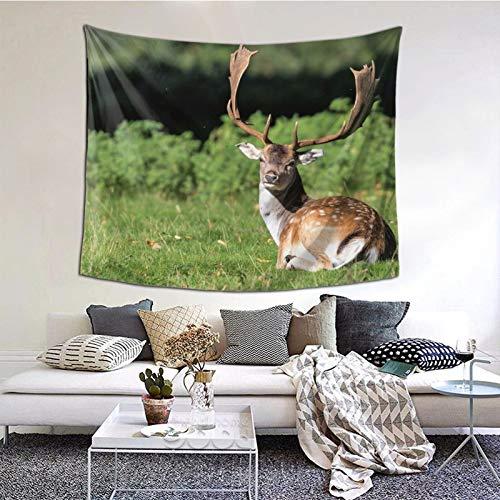 Perfect household goods Tapiz para colgar en la pared, diseño de ciervos de la naturaleza, tapiz vintage para pared, tapiz de microfibra de melocotón, decoración del hogar, 152 x 132 cm