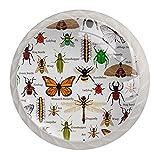 Juego de 4 tiradores de cajón y pomos para cajones con tornillos de cristal para cajón, gabinete, tirador de armario, herrajes naturales para insectos, mariquita, abeja, fuego, hormiga, araña, 35 mm