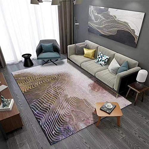 LAMEDER Dormitorio Sala de Estar Alfombra,Alfombra de Engrosamiento Antideslizante Grande de tamaño pequeño y Mediano, Sala de Estar Dormitorio Moderno patrón de Red de Pesca Minimalista, 60 × 90 cm