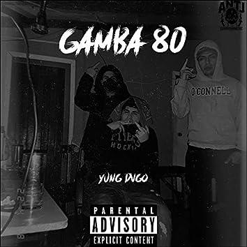 Gamba 80