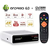GT MEDIA GTS Decodificador Satelite 4K Android 6.0 TV Box Receptor de Satélite DVB-S/S2 Amlogic S905D 2GB RAM+8GB ROM 3D H.265 HEVC MPEG-2/4 WiFi 2.4Ghz BT 4.0 Smart TV Box
