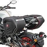 Seitentaschen RF1 für Ducati Diavel/S