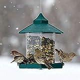 Verdelife Squirrel Proof Wild Bird Feeder,Mixed Seed/Sunflower Heart Bird Feeder,Hanging Lantern-Style Wild Bird Seed Feeder for Garden Decoration/Park (Green1)