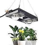 CFGROW COB Cree CXB3590 LED Grow Light, Full Spectrum 200W Plant Growing Light Bulb, 3500K Blanco con diseño de Lente óptica para Plantas de Interior Que envían Veg Bloom Flower