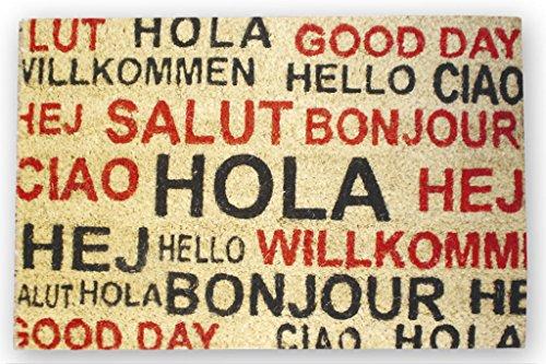 Cofan Hola Idiomas Felpudo Interior, Multicolor, 40 x 60 cm