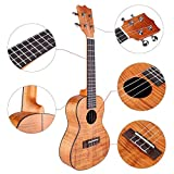 耐久性のあるスタイリッシュなハワイギター、かなりしっかりしたウクレレ、子供大人のためのプロ用汎用