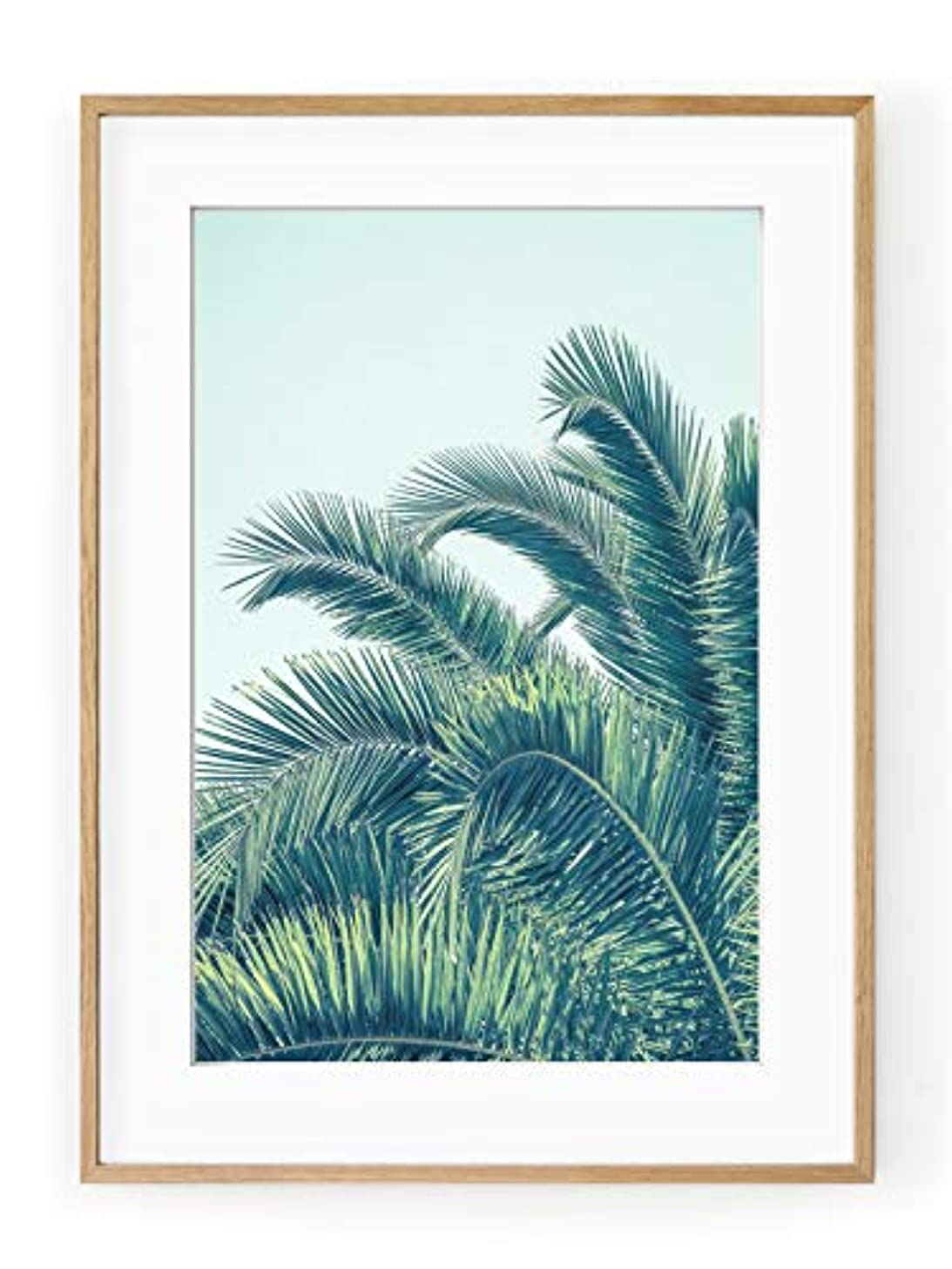 Palm Tree with Black Satin Aluminium Frame and Mount Turquoise, Multicolored, 50x70