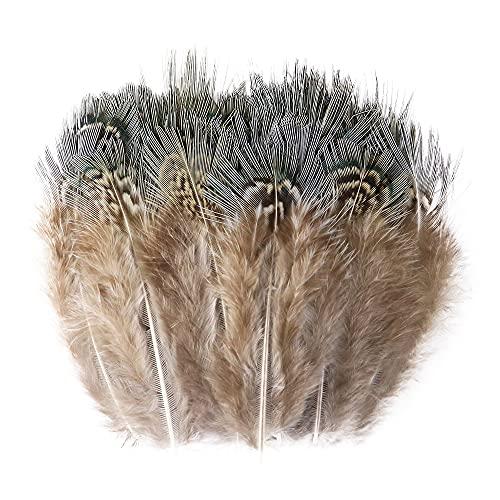 Plumas Decoracion, Faisán Natural Plumas de Gallo para Manualidades Joyas Haciendo Ropa Accesorios de Costura Decoración 5-8cm Plumas 50pcs (Color : B)
