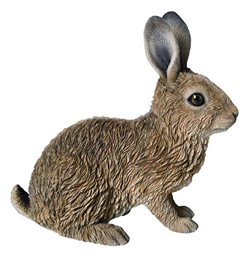 M.E.G Cards & Gifts Vivid Arts - Real Life Young Sitting Hare Home or...