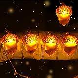 Gamegie Thanksgiving String Lights,Fall Decor 16ft 50 LED /8 Modes...
