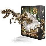 JamBer Tyrannosaurus Rex Juego de Dinosaurios Juguetes Fósiles de Excavación Modelo de Dinosaurio para Niños Niñas