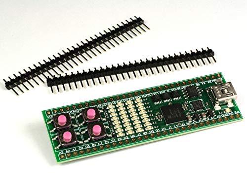 iceFUN iCE40-HX8K FPGA