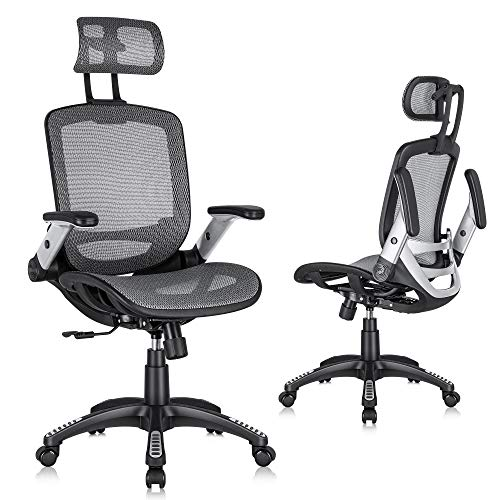 Gabrylly Ergonomic Mesh Office Chair, High Back Desk Chair - Adjustable Headrest with Flip-Up Arms, Tilt Function, Lumbar Support and PU Wheels, Swivel Computer Task Chair, Grey