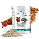 Ida Plus - Futterkalk - Zusatzfutter für Hühner - Premium Futterkalk für Hühner - Mineralstoffe für Hühner & Vitaminmischung für Hühner - Rundumversorgung - Futterkalk mit Kalzium für Hühner, 1 kg