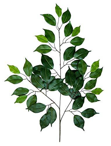 Seidenblumen Roß 12 Stück Ficuszweig 60cm grün mit 42 Blättern DA künstlicher Zweig Ficus Birkenfeige