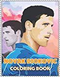 Novak Djokovic: Touch and Color your Idol !