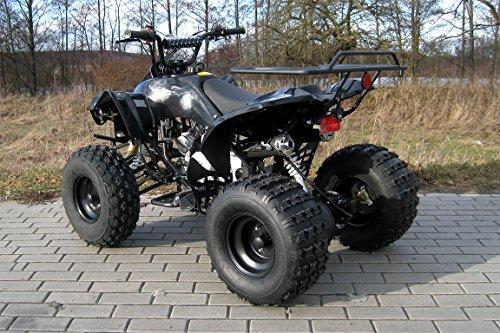 Kinder Quad Warrior (Benzin 125ccm) - 3