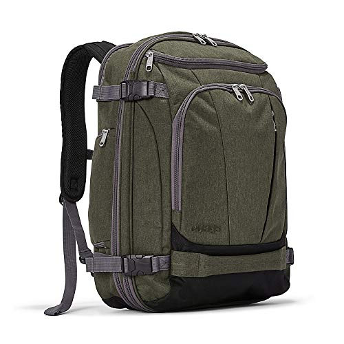 eBags TLS Mother Lode Weekender Junior 19 Inch Carry-On Travel Backpack - Fits Up to 17.5 Inch Laptop - (Sage Green)
