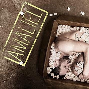 Amaliel