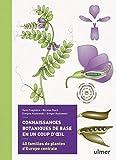 Connaissances botaniques de base en un coup d'oeil