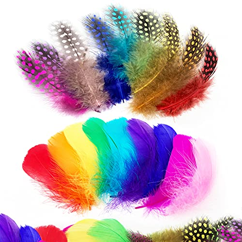 Audamp Craft Feathers 300pcs Colorful Feathers for Craft DIY Wedding Home Party Decorations