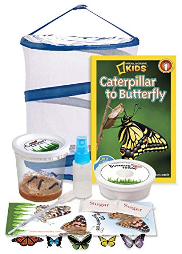 Nature Gift Store Live Butterfly Growing Kit: Shipped with 5 Live...