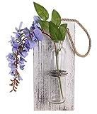 Eanjia - Maceta decorativa para pared, color liso, para colgar macetas, acabado antiguo, sistema hidropónico, de cristal para casa o jardín, para decoración de la sala de estar, no incluye flores