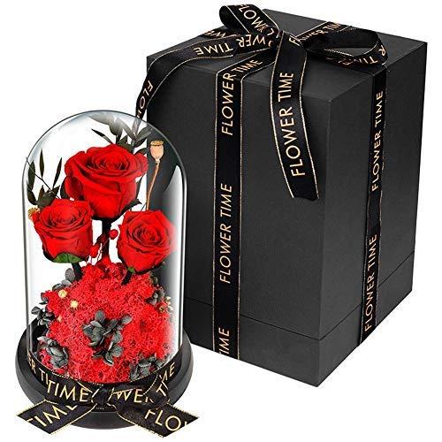 Rosa eterna en cúpula de cristal con luces LED, rosa de belleza y la bestia para boda, aniversario, cumpleaños, día de San Valentín, Navidad, Acción de Gracias (color: rosa)
