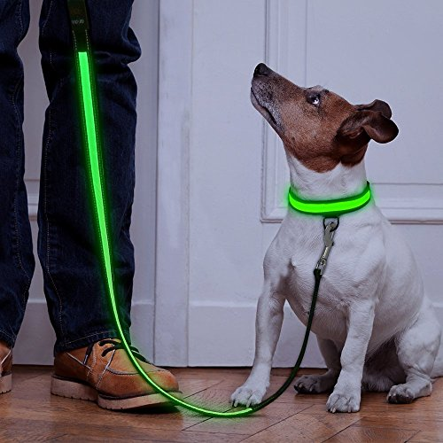 Higo LED Dog Leash