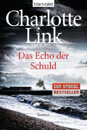 Das Echo der Schuld: Kriminalroman