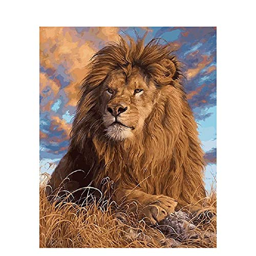 AYLCFC Painting by Numbers for Adults The Lion Lying Down Hand Oil Painting Linen Canvas Acrylic Paint Kitchen Living Room mural-40x50cm