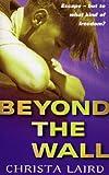 Beyond The Wall (English Edition)